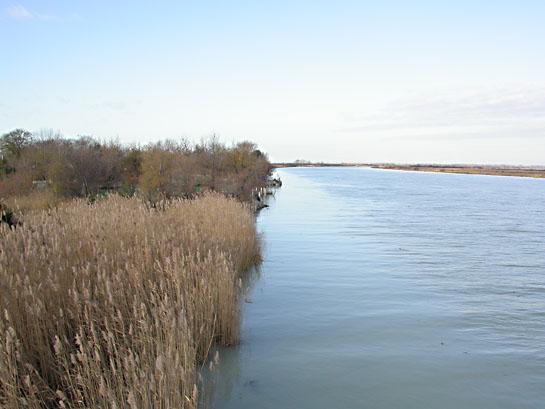 Ecotopo estuariale