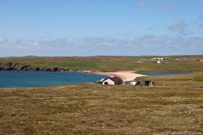 shetland07